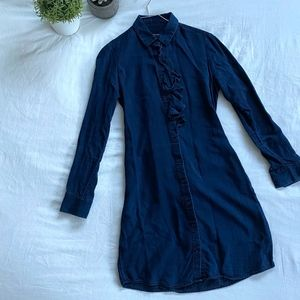 Banana Republic Button-Down Dress (navy blue)